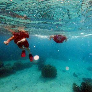 Zanzibar snorkelling volunteer